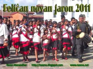 novajaro2011razeno