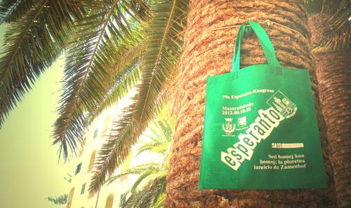palma z torba